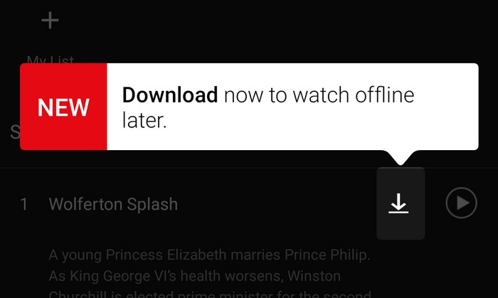 netflix download programs
